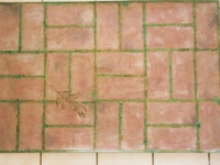 brick-patio-floorcloth