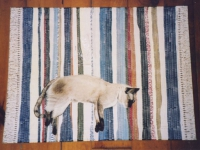 faux-rag-rug-with-cat-floorcloth