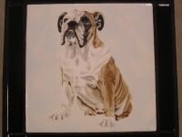 English-bulldog-table-top
