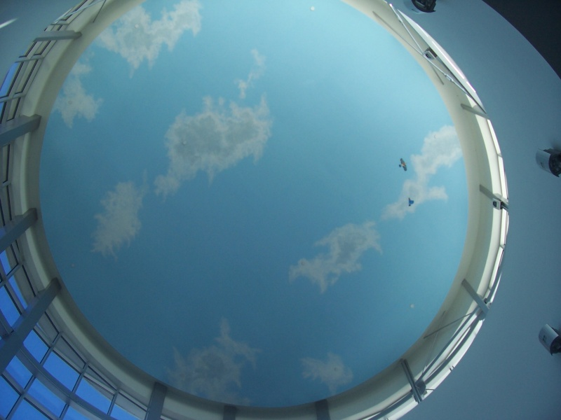 This sky ceiling was painted in the atrium lobby of a cancer hospital